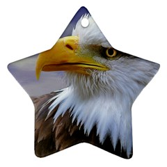Bald Eagle Star Ornament (two Sides)