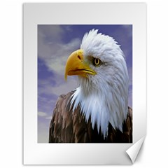 Bald Eagle Canvas 36  x 48  (Unframed)