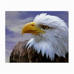 Bald Eagle Glasses Cloth (small, Two Sided)