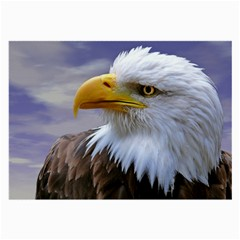 Bald Eagle Glasses Cloth (Large, Two Sided)