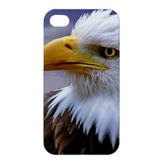 Bald Eagle Apple Iphone 4/4s Hardshell Case