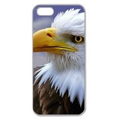 Bald Eagle Apple Seamless iPhone 5 Case (Clear)