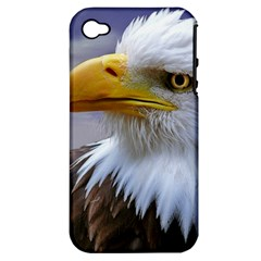 Bald Eagle Apple iPhone 4/4S Hardshell Case (PC+Silicone)