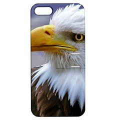 Bald Eagle Apple Iphone 5 Hardshell Case With Stand