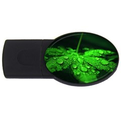 Waterdrops 1GB USB Flash Drive (Oval)