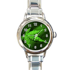 Leaf With Drops Round Italian Charm Watch