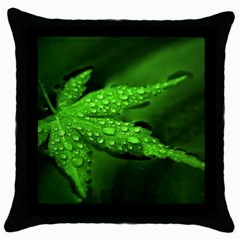Leaf With Drops Black Throw Pillow Case
