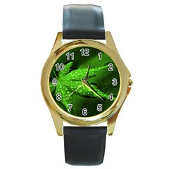 Leaf With Drops Round Metal Watch (Gold Rim)