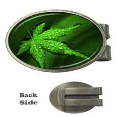 Leaf With Drops Money Clip (Oval)