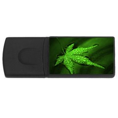 Leaf With Drops 1GB USB Flash Drive (Rectangle)