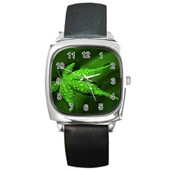Leaf With Drops Square Leather Watch