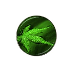 Leaf With Drops Golf Ball Marker 10 Pack (for Hat Clip)