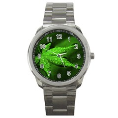 Leaf With Drops Sport Metal Watch