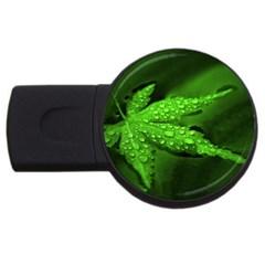 Leaf With Drops 4GB USB Flash Drive (Round)