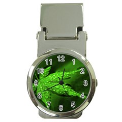 Leaf With Drops Money Clip with Watch