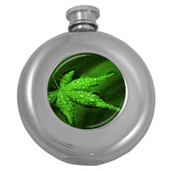 Leaf With Drops Hip Flask (Round)