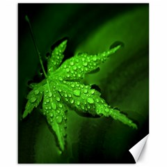 Leaf With Drops Canvas 16  X 20  (unframed)