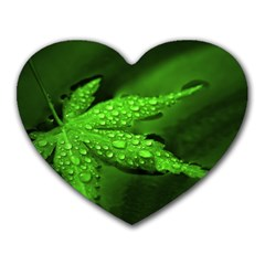 Leaf With Drops Mouse Pad (Heart)