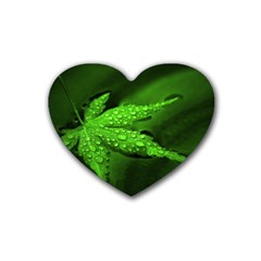 Leaf With Drops Drink Coasters 4 Pack (Heart)