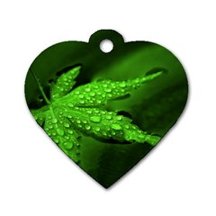 Leaf With Drops Dog Tag Heart (One Sided)