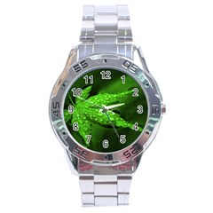 Leaf With Drops Stainless Steel Watch (Men s)