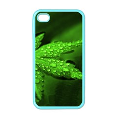 Leaf With Drops Apple iPhone 4 Case (Color)