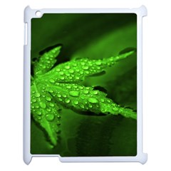 Leaf With Drops Apple iPad 2 Case (White)