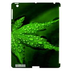Leaf With Drops Apple Ipad 3/4 Hardshell Case (compatible With Smart Cover)