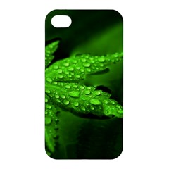 Leaf With Drops Apple iPhone 4/4S Premium Hardshell Case