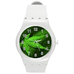 Leaf With Drops Plastic Sport Watch (medium)