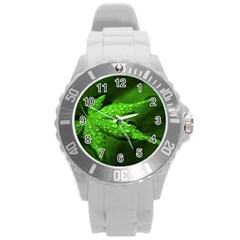 Leaf With Drops Plastic Sport Watch (large)