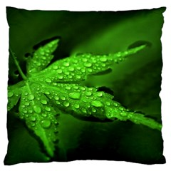 Leaf With Drops Large Cushion Case (two Sided)