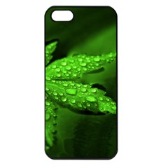 Leaf With Drops Apple iPhone 5 Seamless Case (Black)