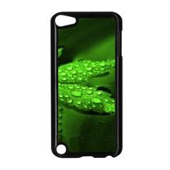 Leaf With Drops Apple iPod Touch 5 Case (Black)