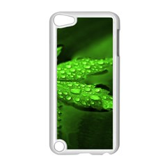 Leaf With Drops Apple iPod Touch 5 Case (White)