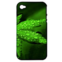 Leaf With Drops Apple iPhone 4/4S Hardshell Case (PC+Silicone)