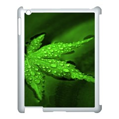 Leaf With Drops Apple iPad 3/4 Case (White)