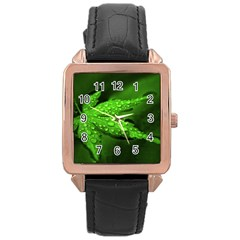 Leaf With Drops Rose Gold Leather Watch