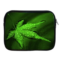 Leaf With Drops Apple iPad 2/3/4 Zipper Case