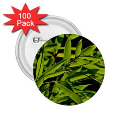 Bamboo 2.25  Button (100 pack)