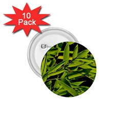 Bamboo 1 75  Button (10 Pack)