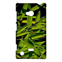 Bamboo Nokia Lumia 720 Hardshell Case