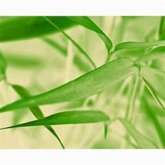 Bamboo Canvas 16  X 20  (unframed)