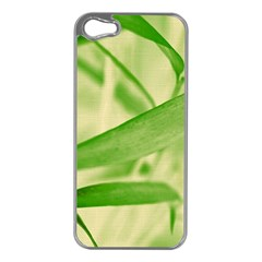 Bamboo Apple iPhone 5 Case (Silver)