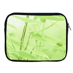 Bamboo Apple iPad 2/3/4 Zipper Case