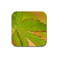 Leaf Drink Coaster (square)
