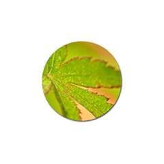 Leaf Golf Ball Marker 4 Pack