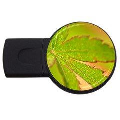 Leaf 2gb Usb Flash Drive (round)