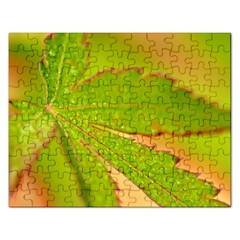 Leaf Jigsaw Puzzle (Rectangle)