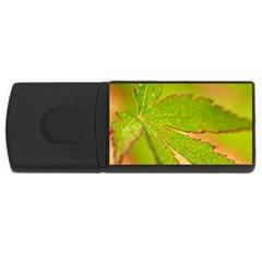 Leaf 4GB USB Flash Drive (Rectangle)